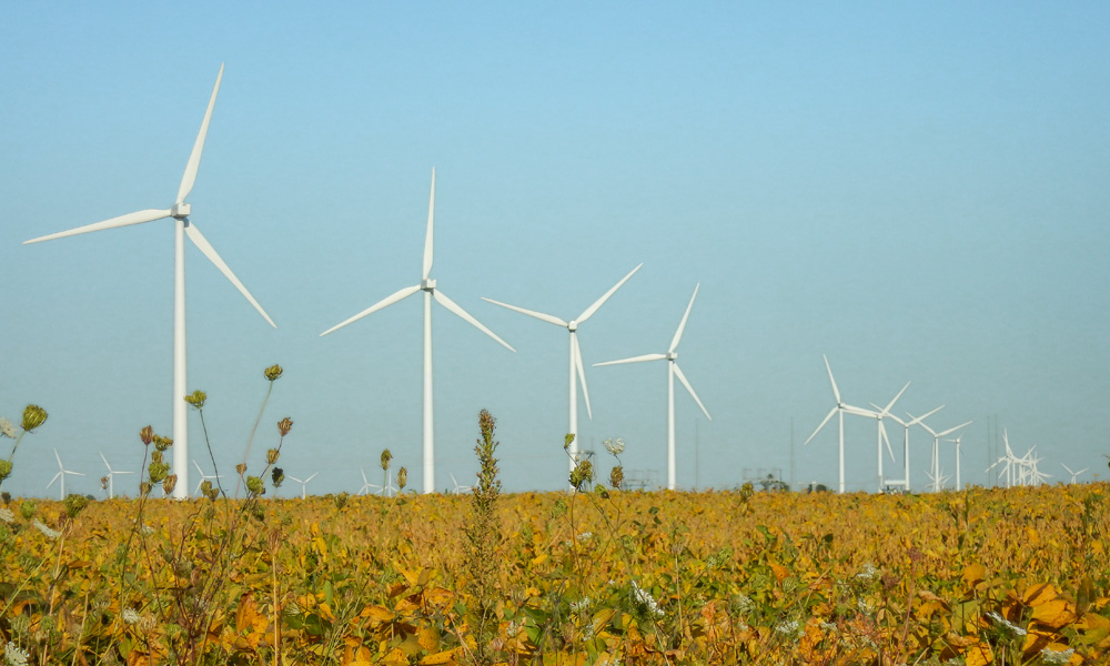 A row of wind turbines in a field