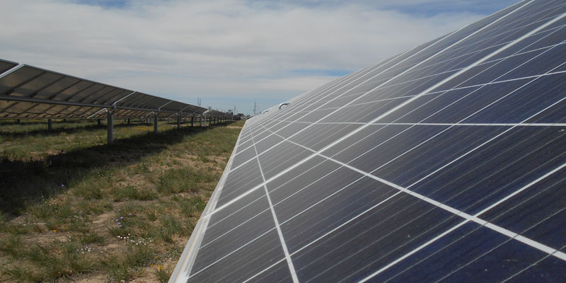 Solar panel row in field