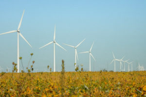 WIND TURBINES BEHIND OPEN FIELD