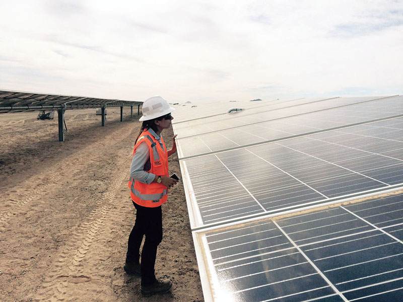 Employee reviewing solar panel in solar field